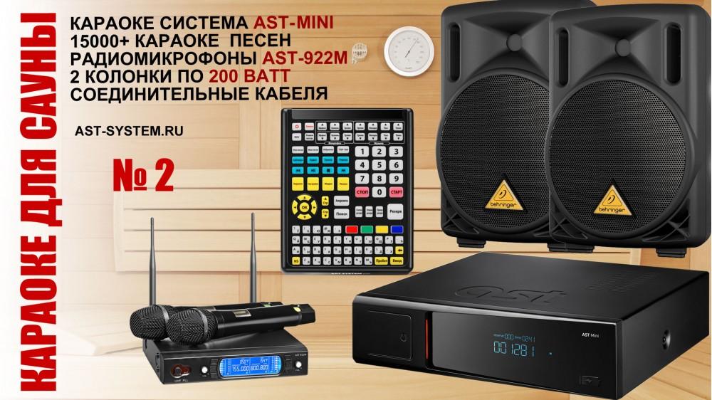 Караоке для сауны с системой караоке, беспроводными микрофонами и акустической системой 400 Ватт